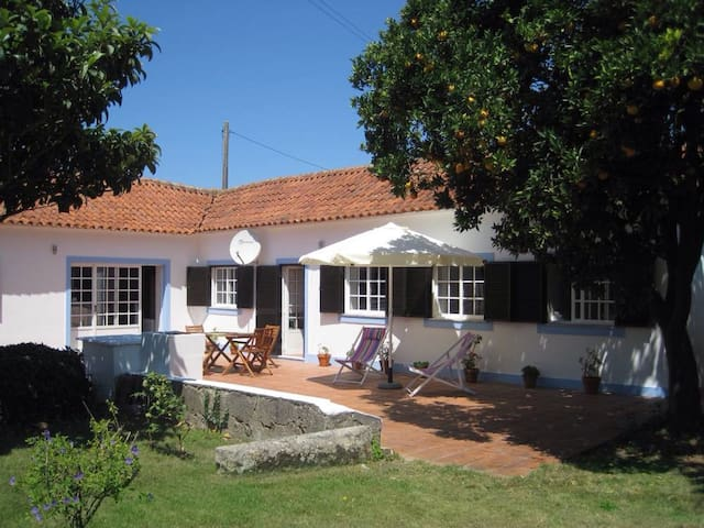 Typical house in the Aveiro lagoon - Murtosa - Hus