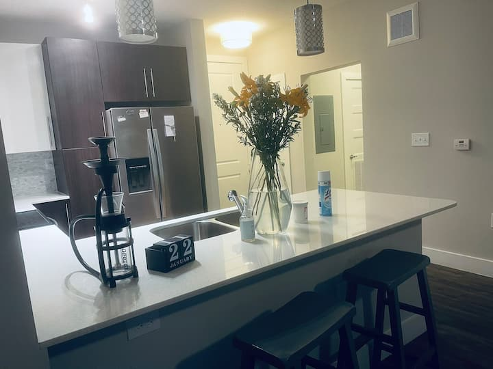 Cozy apartment in Buckhead, Mins from downtown.