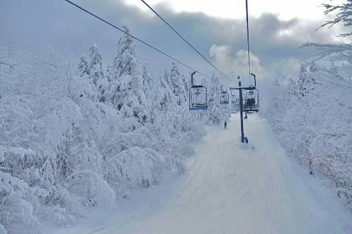 Mt Abrams ski in/out Spring skiing. - Greenwood - Srub