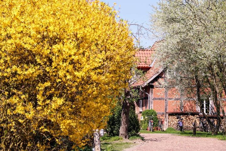 Apartment im idyllischen Bauerngarten Hoyerhagen