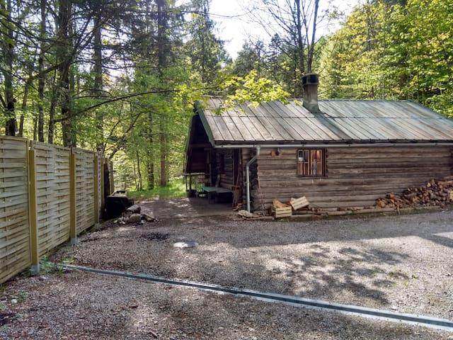 Urige Selbstversorgerhütte im Wald