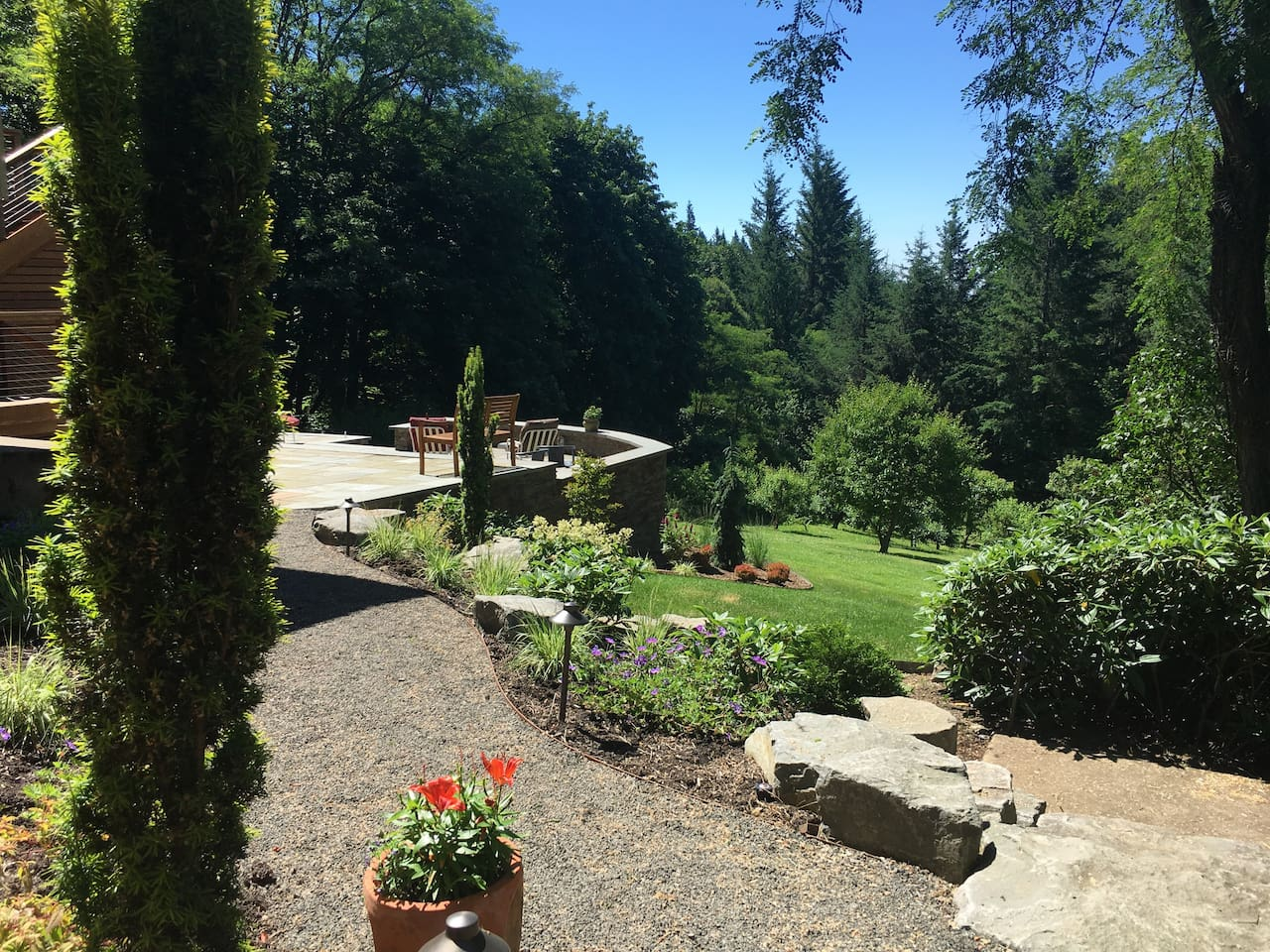 View of the backyard