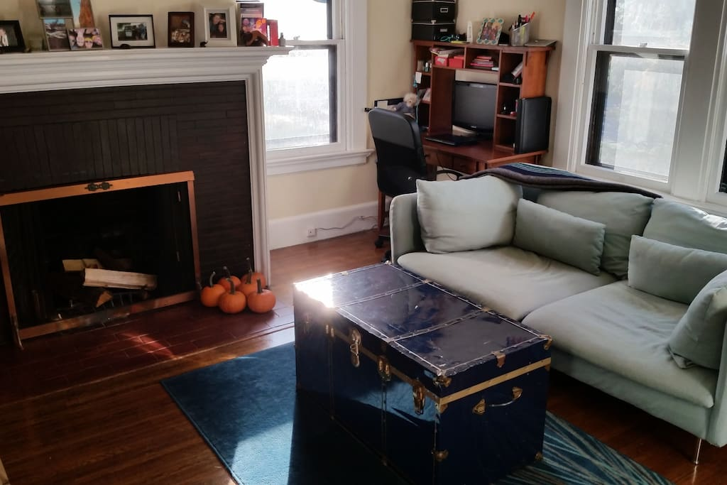 parkside east rock 1 bd near yale apartments for rent in new haven connecticut united states. Black Bedroom Furniture Sets. Home Design Ideas