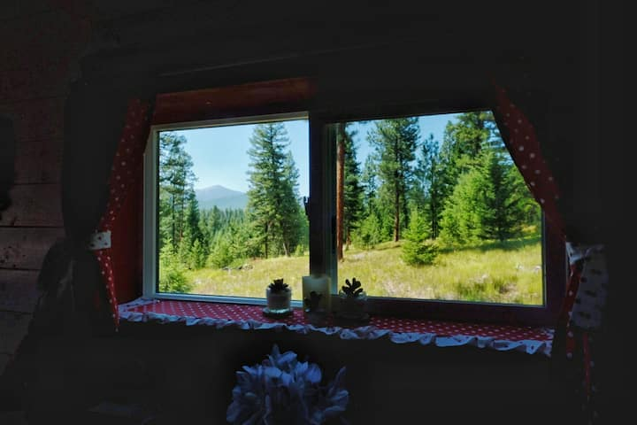 Pet-friendly Shanty+Hottub on 100 ac near Missoula