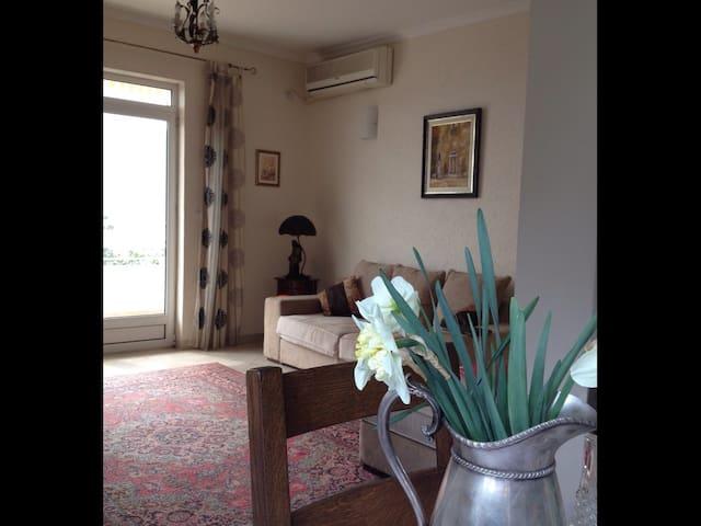 Living room vith terrace
