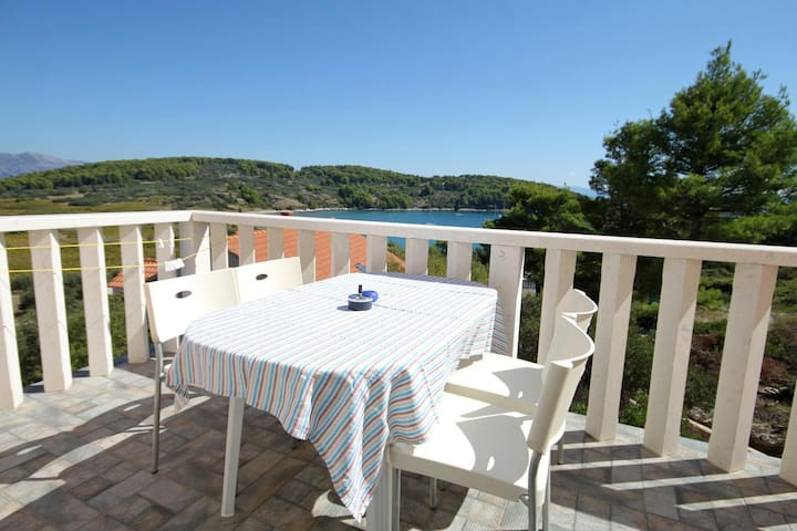 Two bedroom apartment with terrace and sea view Lumbarda (Korčula) (A-9271-a)