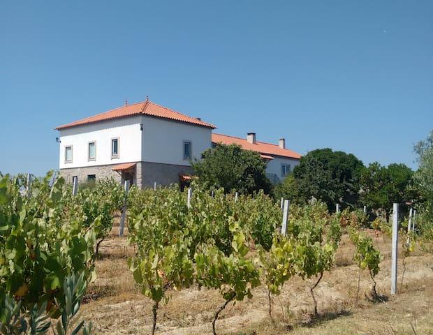 Quinta de Vodra - Seia - เกสต์เฮาส์