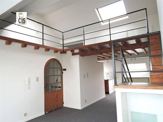Super Duplex Great House ! - Schaerbeek - Huis