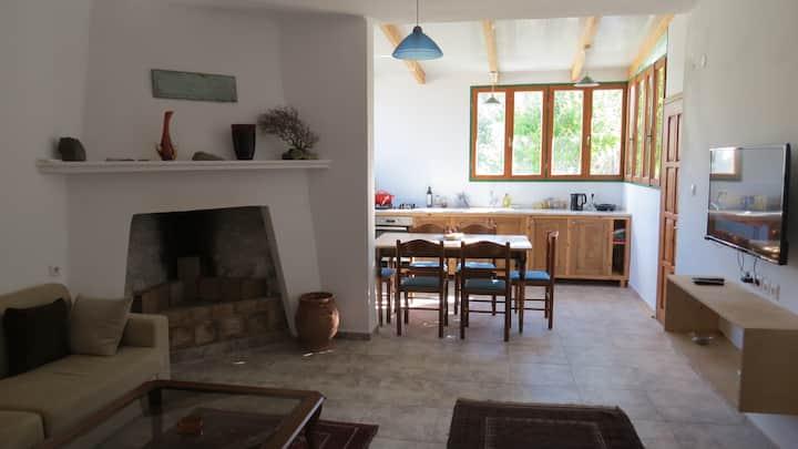 Entire Home in Makry Gialos Perivolkia