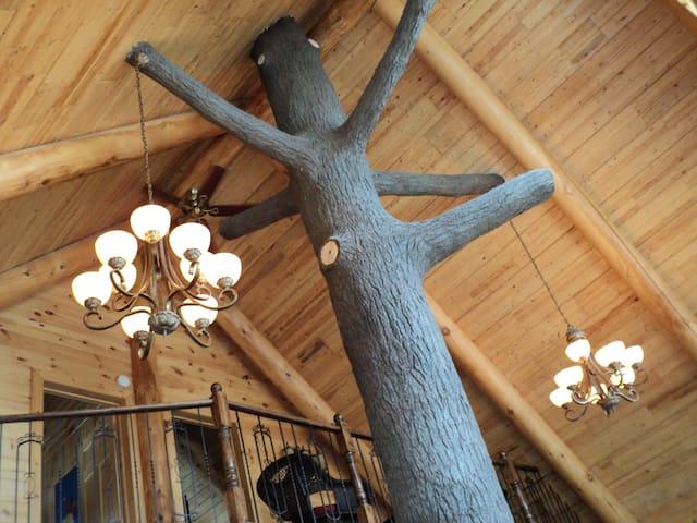 Le bois rond relax, près du lac St-Tite