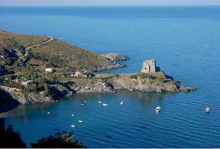 Spettacolare Casa a picco sul mare, - San Nicola Arcella - Hus
