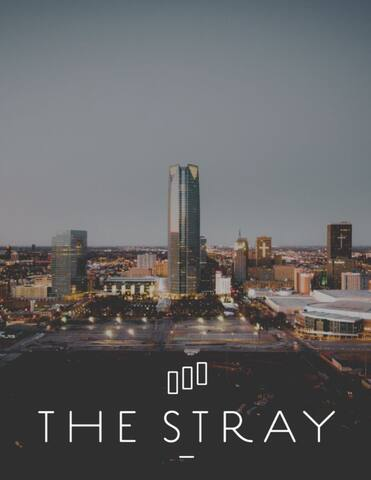 The Stray Guidebook