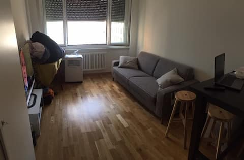 Cosy renovated Paquis studio