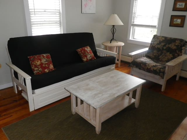 Double Futon Couch in Living Room