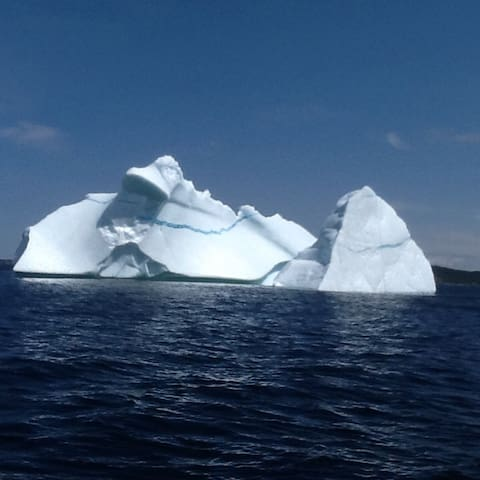 """Icebergs are plentiful all around Little Bay Islands. In the heart of """"Iceberg Alley""""!"""