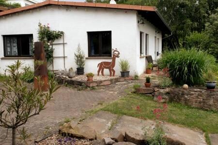 Haus Alpaka, Ferienbungalow, Urlaub bei Alpakas