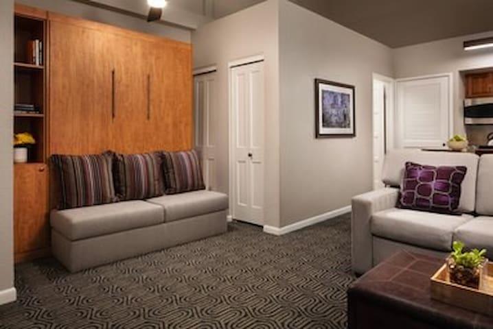 Living Area - Murphy Bed