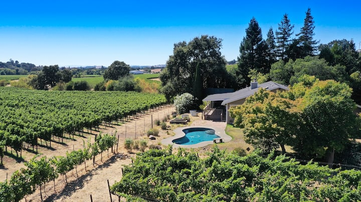 Live IN a Painting-  Napa estate w/ pool & vines