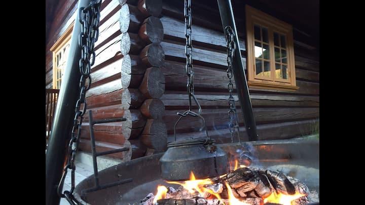 Tømmerhytte med Ski in -out! Rett ved bakken!