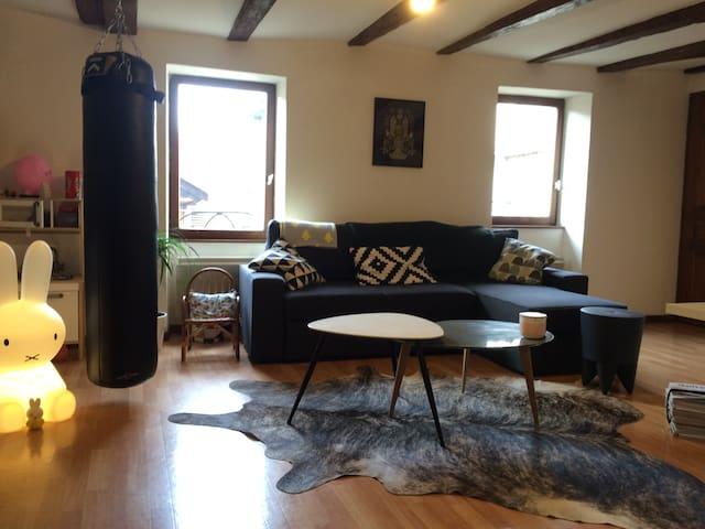 Chambre en plein coeur de la vieille ville - Annecy - Apartmen