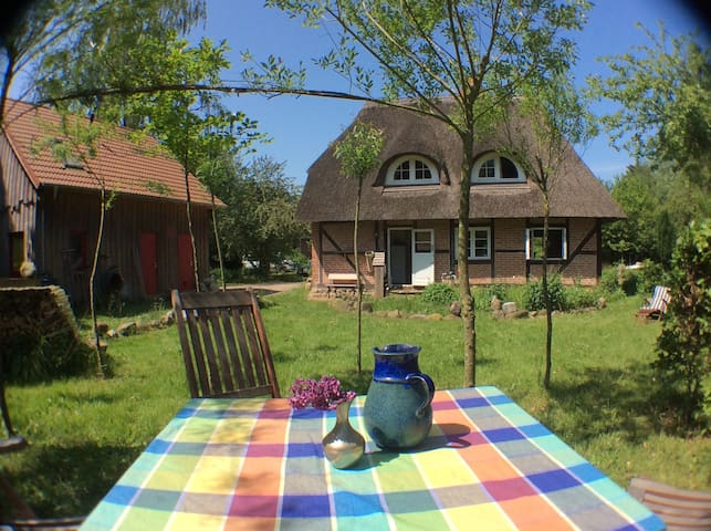 thatched cottage on 7 acres of land - Schönwalde am Bungsberg