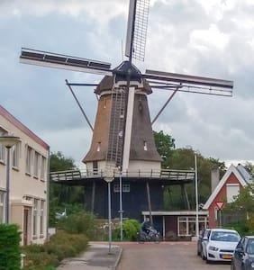 Alkmaar - Room near the 't Roode Hert windmill - アルクマール