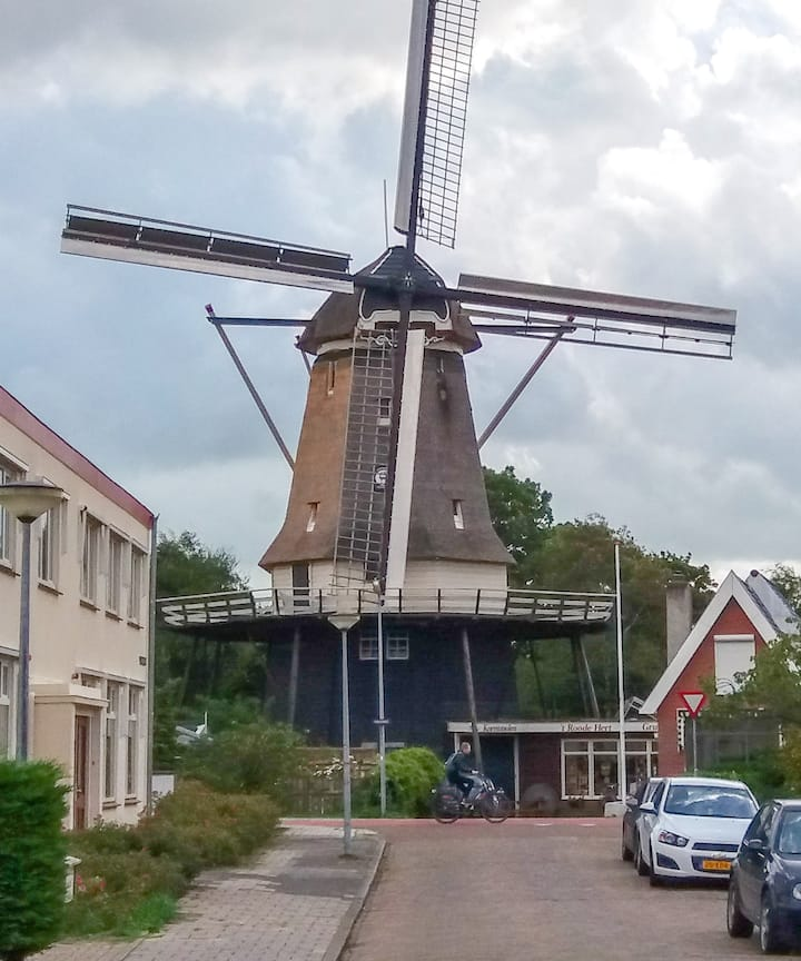 Alkmaar - Room near the 't Roode Hert windmill
