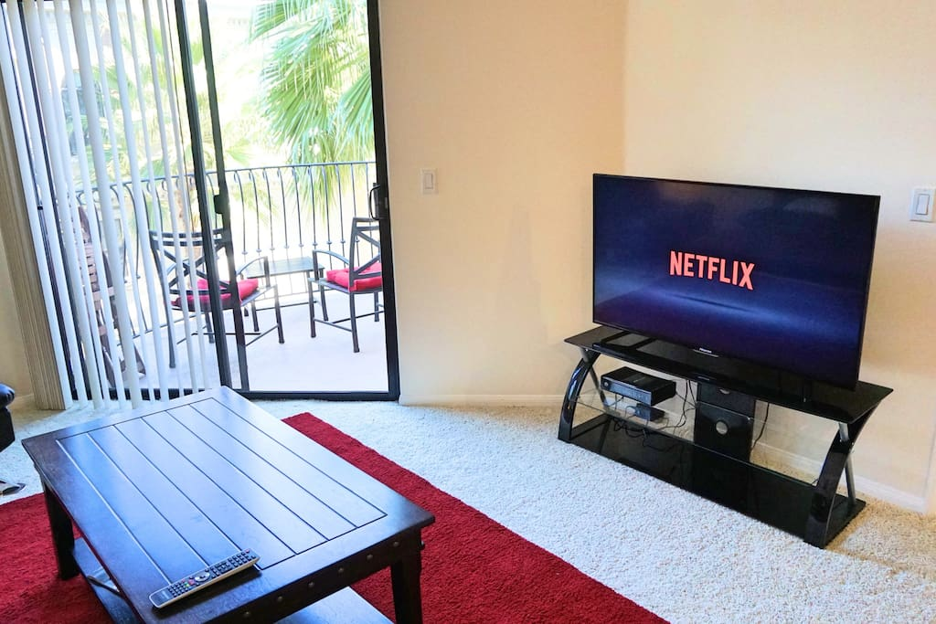 TV with Netflix to watch your favorite shows
