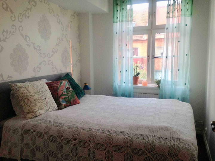Cosy apartment near City centre