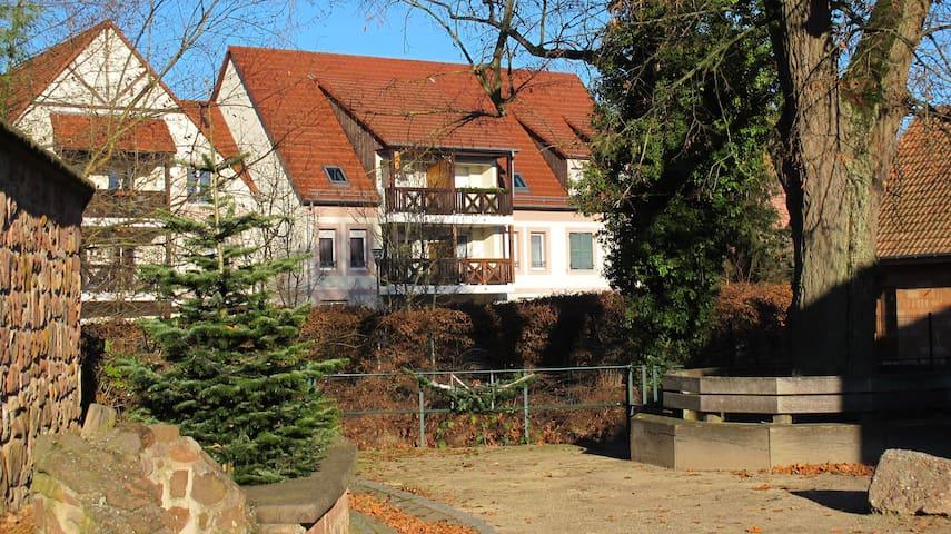 Bel appart F3 à 6km d'Obernai et 2km de Gertwiller - Bourgheim - Wohnung
