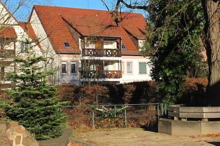 Bel appart F3 à 6km d'Obernai et 2km de Gertwiller - Bourgheim