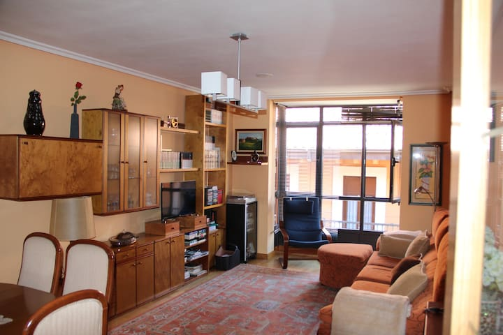 Big and cosy apartment very close to the Cathedral - León - Apartment