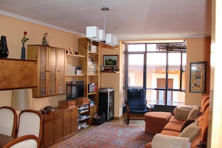 Big and cosy apartment very close to the Cathedral - León - Huoneisto