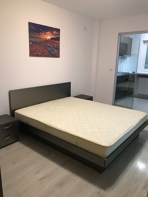 Single Room Titan Palladium Residence Sector 3