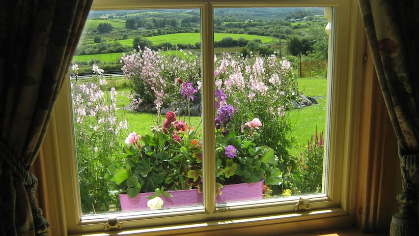 View of garden from sun room..