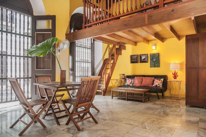 Eclectic Loft in Center of Old SJ - San Juan - Loft