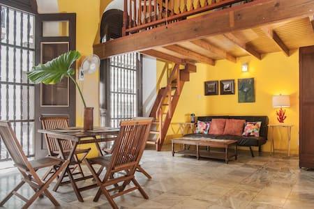 Eclectic Loft in Center of Old SJ - San Juan
