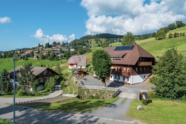 Beguiling Apartment in Todtnauberg with Garden near City Centre