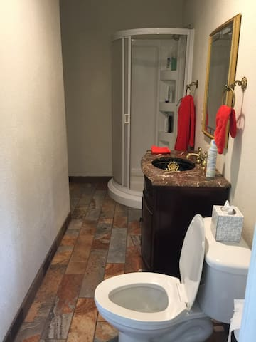 private bathroom with standing shower, basic toiletries provided.
