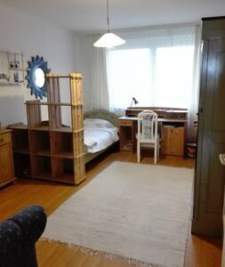 hübsches freundliches 20qm Zimmer in Lüneburg - Lüneburg - Apartemen
