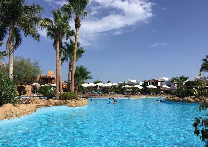 Delta Sharm Resort 105 sqm Large  Apartment