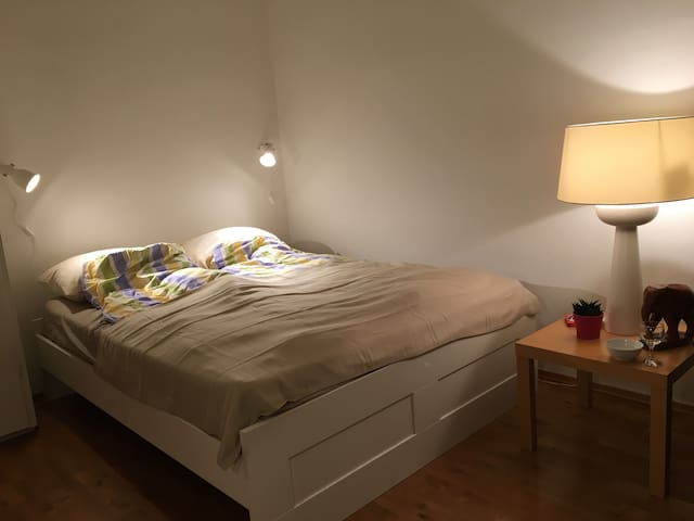 Cute studio in a great location! - Oslo