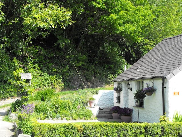200yr old cottage in the Ystwyth Valley