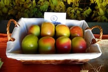 Uno de los tesoros del Rincón: la manzana Esperiega
