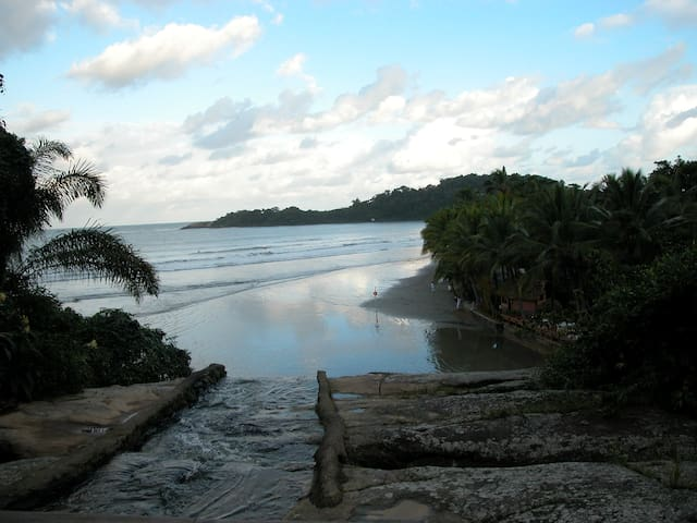 paradise in brazil, ocean view in a rain forest
