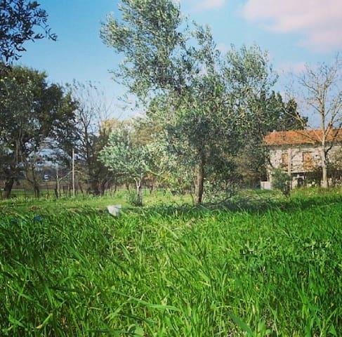 Casa di campagna del primo '900 - c.da Mosti