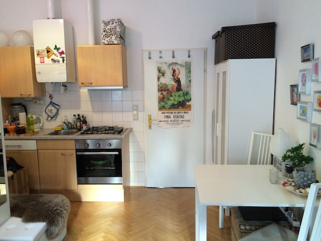 Cozy Single Appartment close to the city center - Viyana - Daire