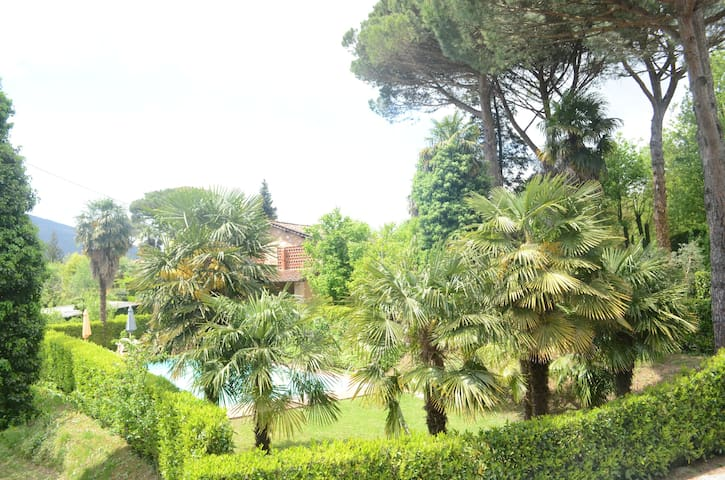 Terrarossa Lucca 2