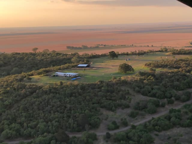FigTree - A Unique Country Retreat with Airstrip