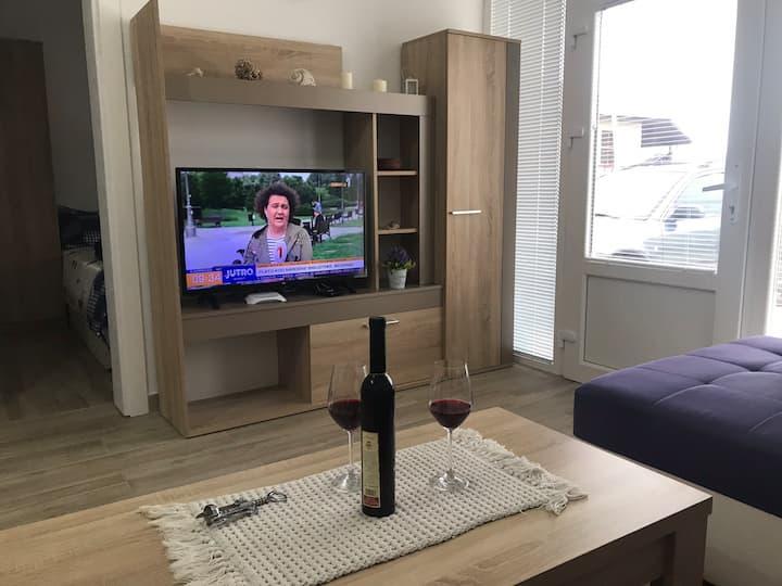 Apartment Prijevor